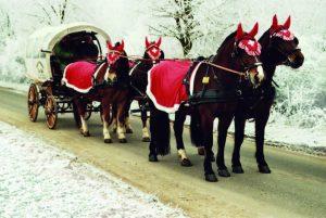 Winterliche Kutschfahrten durch Kiedrich zum Nikolausfest im Weingut