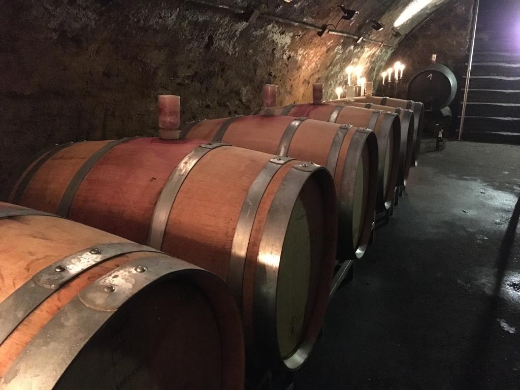 Weingut Bur – ein Blick in den Keller