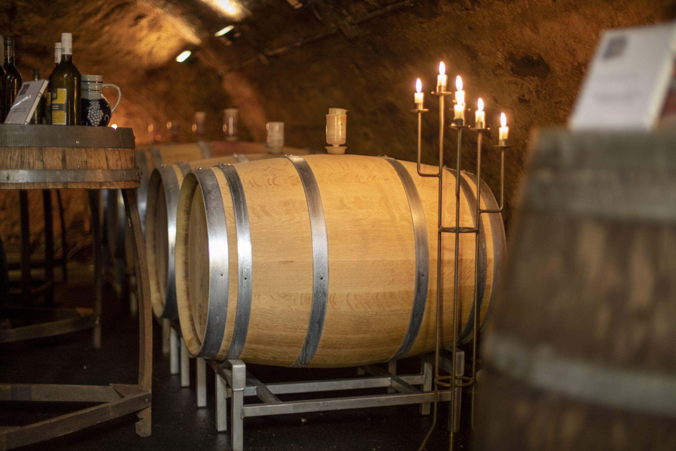 Keller im Weingut